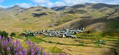 Köyde mangal – Züleyha Akın