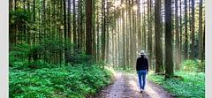 Tempolu yürüyüş Covid-19'dan ölüm riskini 4 kat azaltıyor