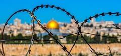 Saray'ın İsrail tepkisi de göstermelik
